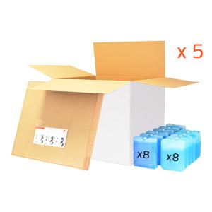 Lot 5 BOX 100L - 48h (utile 66.6L) PHARMA